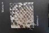 Питон (Granit)