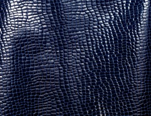 Галантерейная кожа Лак кукуруза синий на синем
