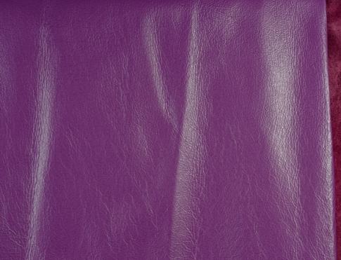 Одежная кожа С2 (2)