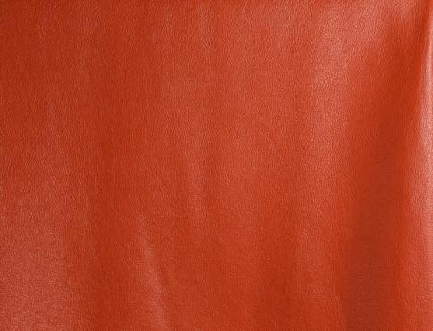 Одежная кожа С10 (2)