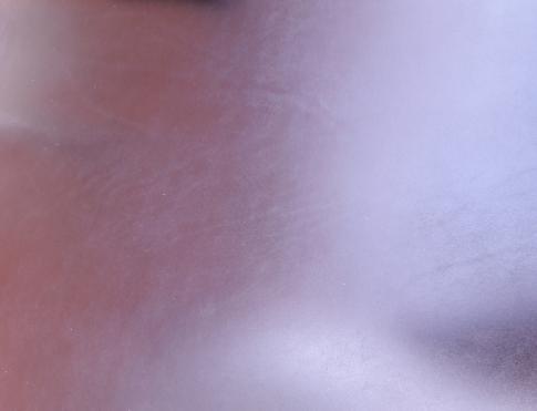 Шорно седельная кожа 20160812_120221